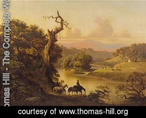 Thomas Hill - Napa Valley